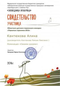 Кантюкова Алина_под